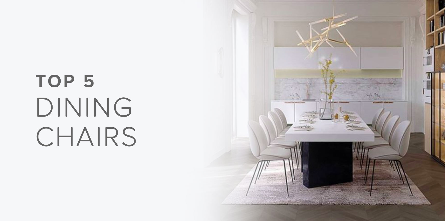 Top 5 Dining Chairs