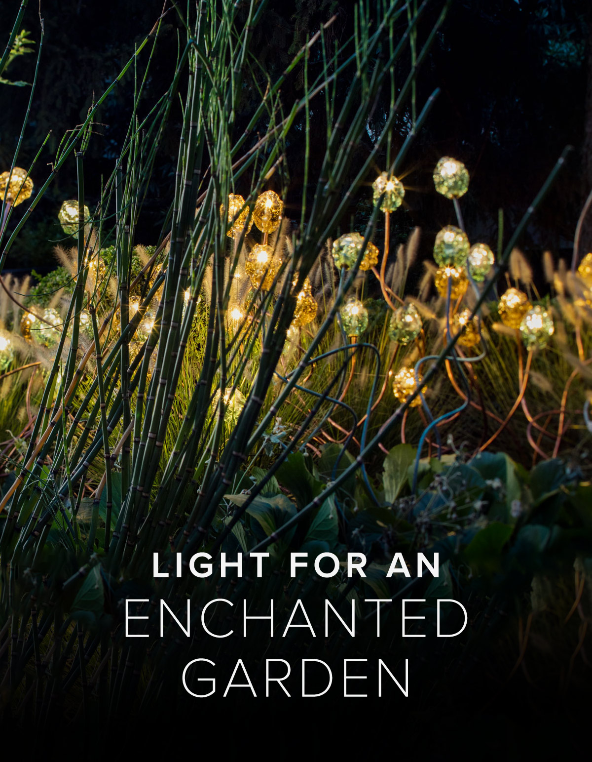 Lights for an Enchanted Garden